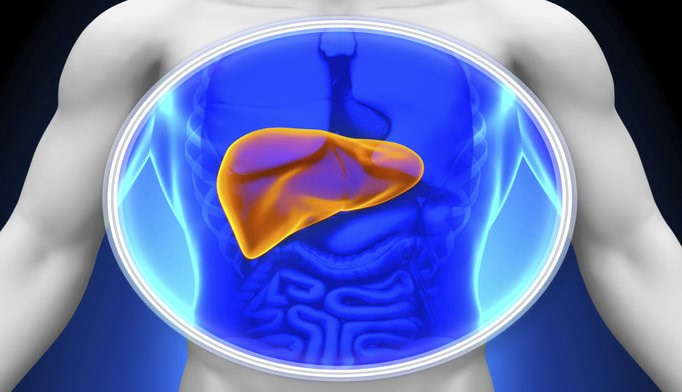 Liver Stiffness Measurement Predicts Hepatic Events, Death in Chronic Hep B