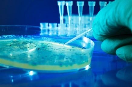 Common Cause of GI Illness Noted to be Highly Resistant to Antimicrobials