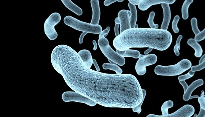 Enteropathogen Testing and Diarrhea Incidence