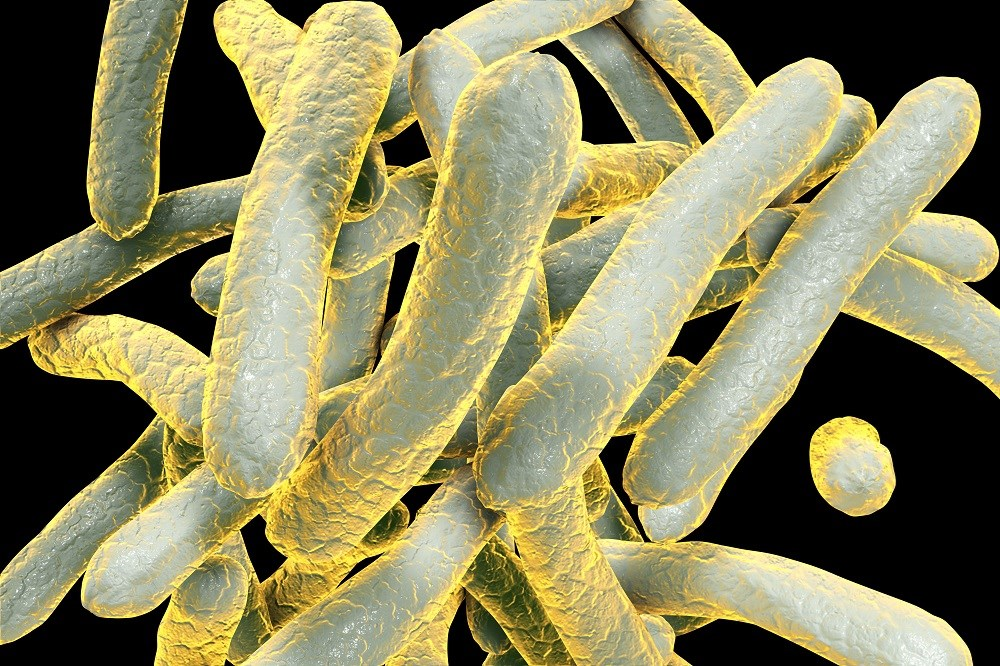 Time to Sputum Culture Conversion Similar in Isoniazid-Resistant and Susceptible TB