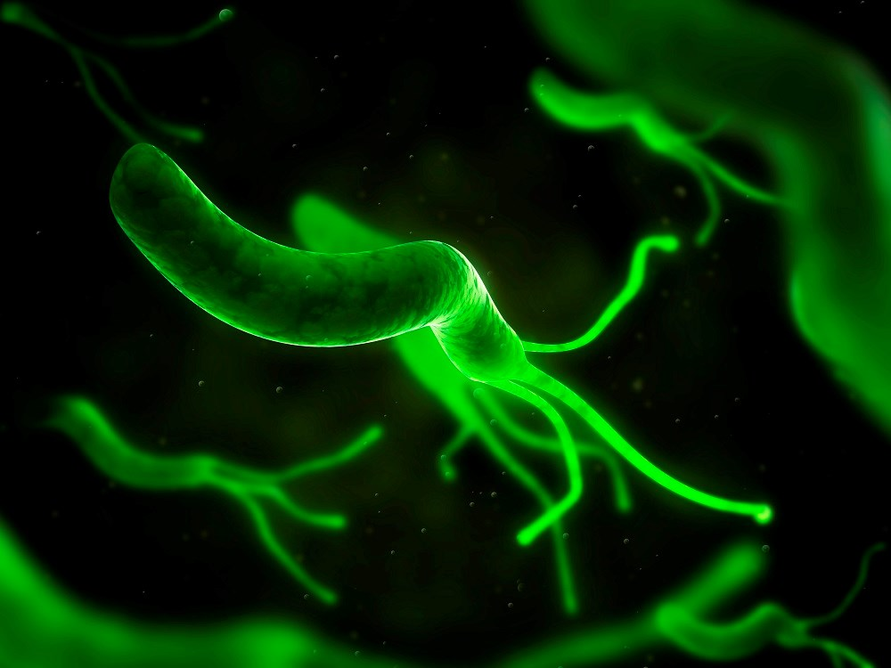 New Guidelines Show Best Practices for <i>H pylori</i> Treatment
