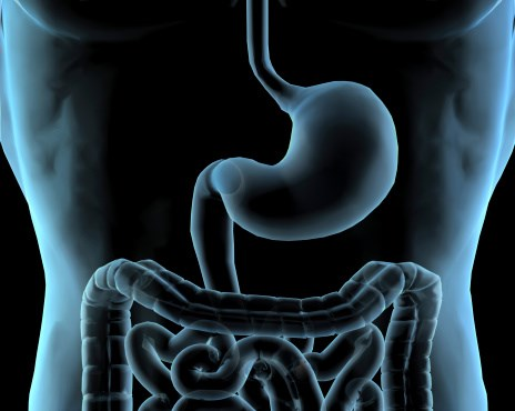 Review Links Helicobacter pylori With Metabolic Syndrome