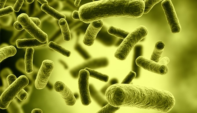 Multiply Recurrent C difficile Infection Rate 4 Times Higher Than CDI