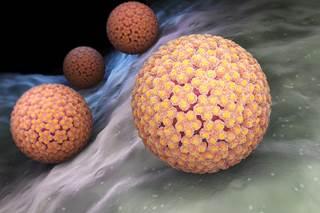 Human Papillomavirus Vaccine Not Linked To Autoimmune Disease