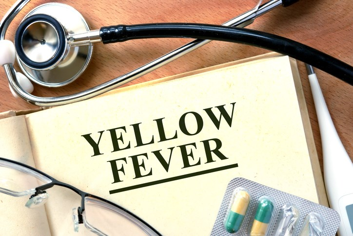 Yellow fever outbreak has the potential to be the fifth mosquito-born infection in the US since the 1990s.