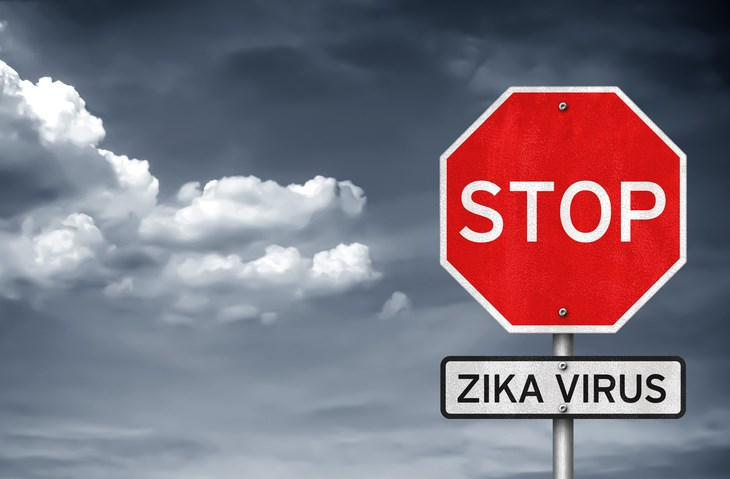 Zika Outbreak in US Could Mean High Economic Burden