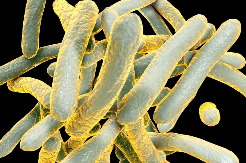 Automated Molecular Assay Detects Drug-Resistant Tuberculosis