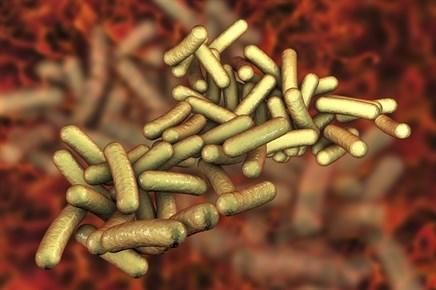 IDSA Updates Infectious Diarrhea Guidelines