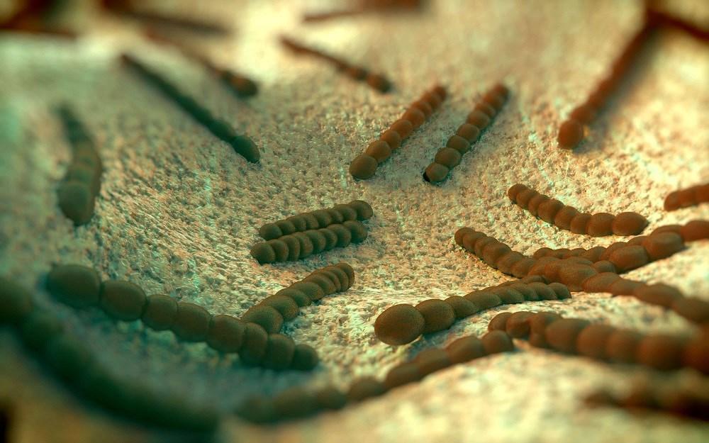 Pneumococcal Vaccine May Reduce Resistant Streptococcus Pneumoniae Carriage