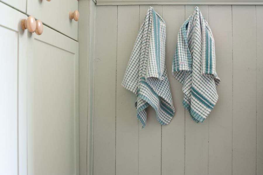 The researchers found that 49 percent of the kitchen towels had bacterial growth.