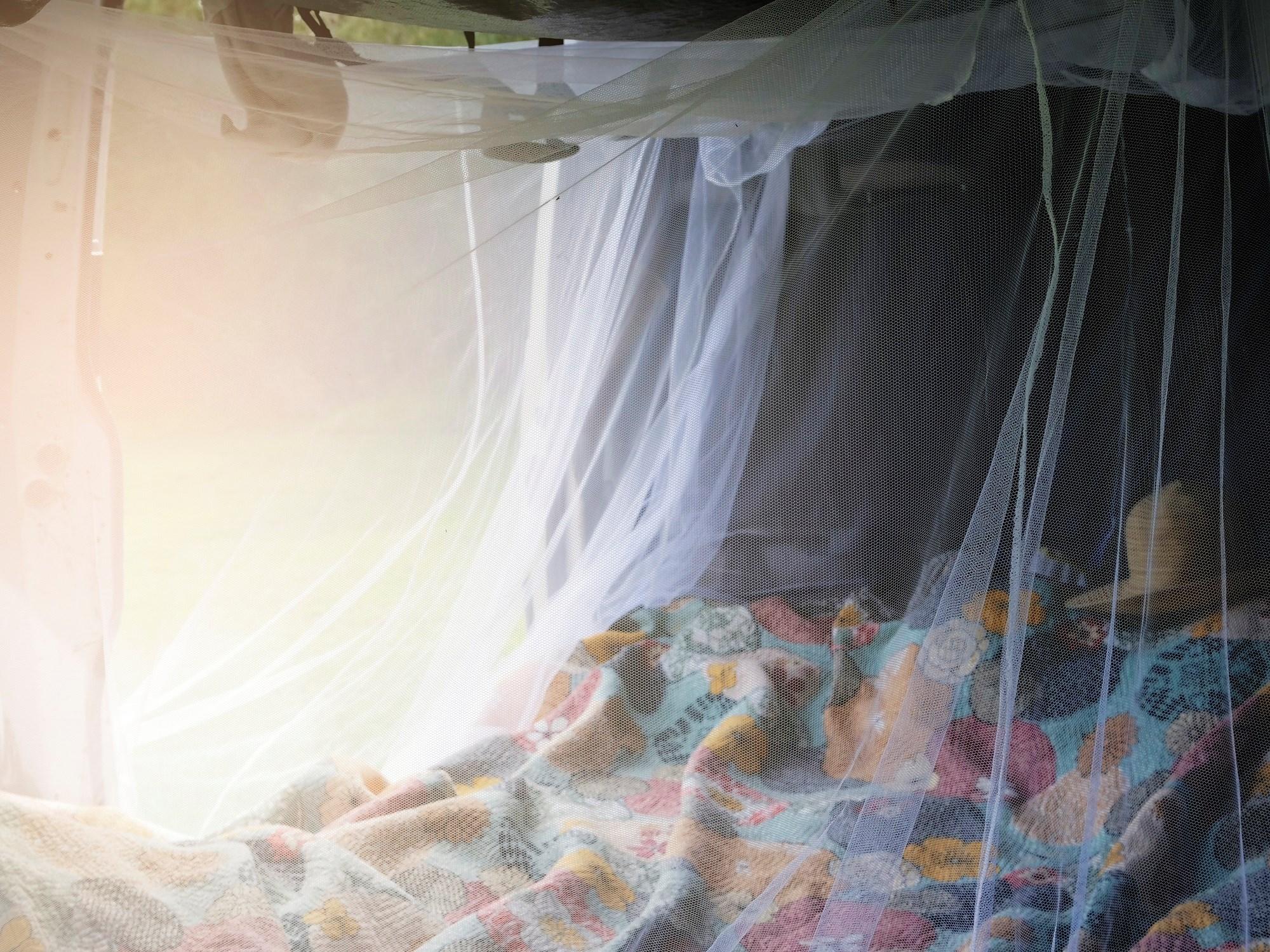 Permethrin Plus Pyriproxyfen-Treated Bednets Reduce Malaria Transmission